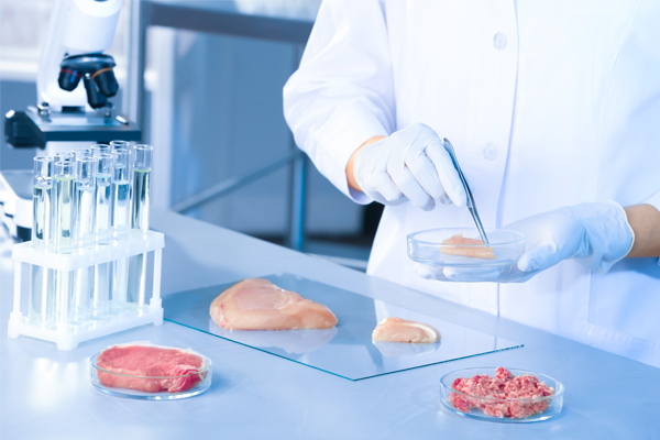 testing meat in laboratory